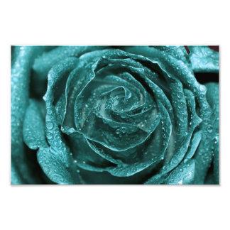Fantasy Teal Rose Art Photo
