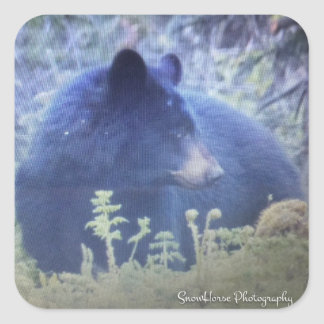 Fantôme l'ours noir sticker carré