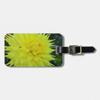 Farewell to Dreams Luggage Tag