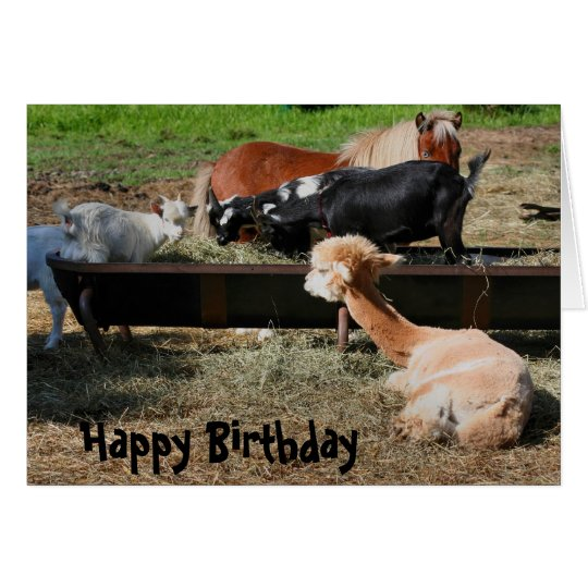 Farm Animal Friends Nature Birthday Card