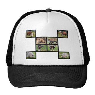 Farm animals mosaic trucker hat