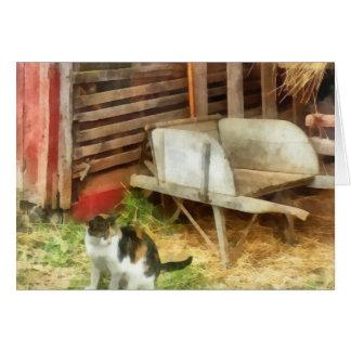 Farm Cat Card