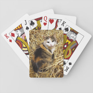 Farm Cat Photo Playing Cards