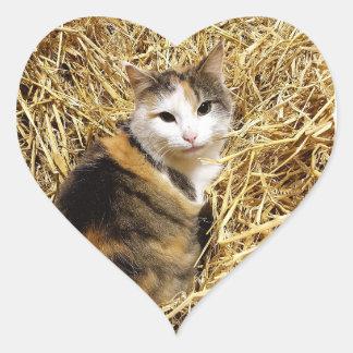 Farm Cat Sticker