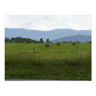 Farm Country Postcard