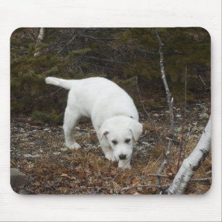 Farm Dog Puppy Mouse Pad