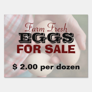 Farm Fresh Eggs For Sale 2