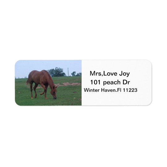 Farm Horse Address Lables Return Address Label