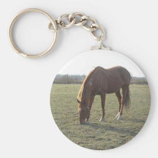 Farm Horse Grazing Basic Round Button Keychain