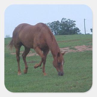 Farm Horse Sticker Square Sticker