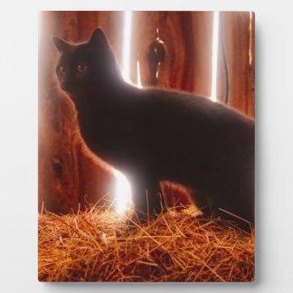 Farm Kitten Plaque