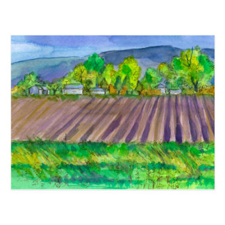Farm Land Mountain Landscape Postcard
