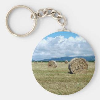 Farm landscape basic round button keychain