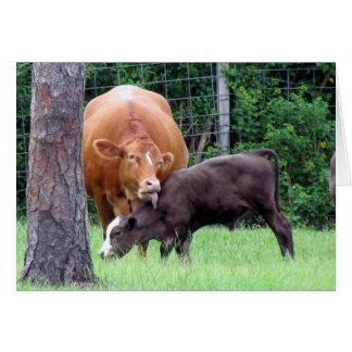Farm Life (6328) - Cows Card