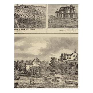 Farm, vineyard and residences in Cedar County Postcard