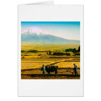 Farmers Oxen Plowing Field in Shadow of Mt. Fuji Card