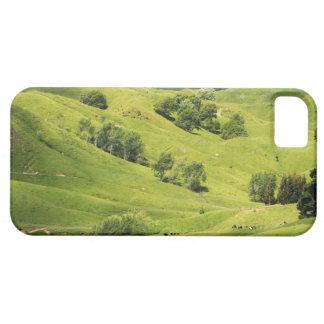 Farmland near Gisborne, New Zealand iPhone 5 Covers