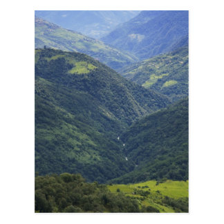 Farmlands and Himalaya forest in Mangdue valley Post Card