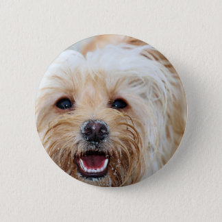 Farris - Lucy - Mixed Breed 2 Inch Round Button