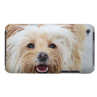 Farris - Lucy - Mixed Breed Barely There iPod Cover
