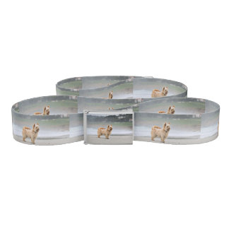 Farris - Lucy - Mixed Breed Belt