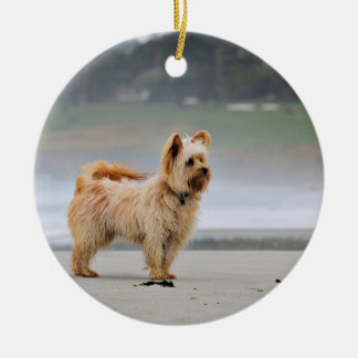 Farris - Lucy - Mixed Breed Ceramic Ornament