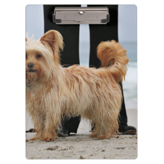 Farris - Lucy - Mixed Breed Clipboard