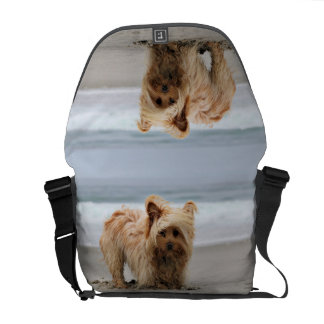 Farris - Lucy - Mixed Breed Courier Bag