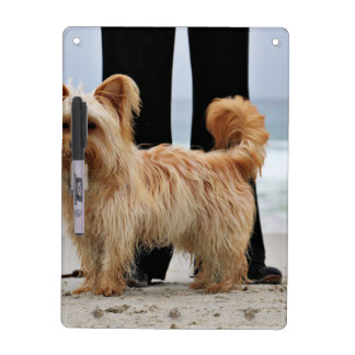 Farris - Lucy - Mixed Breed Dry Erase Board