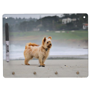 Farris - Lucy - Mixed Breed Dry Erase Board With Keychain Holder