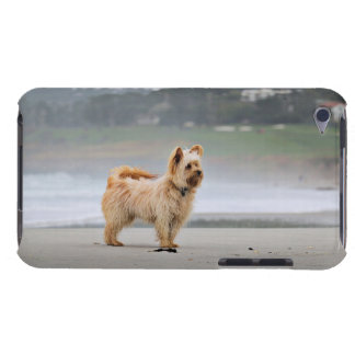 Farris - Lucy - Mixed Breed iPod Touch Case-Mate Case