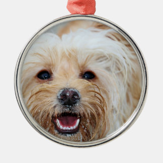 Farris - Lucy - Mixed Breed Metal Ornament