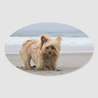 Farris - Lucy - Mixed Breed Oval Sticker