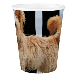 Farris - Lucy - Mixed Breed Paper Cup