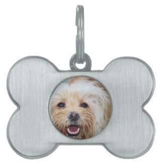 Farris - Lucy - Mixed Breed Pet Name Tag