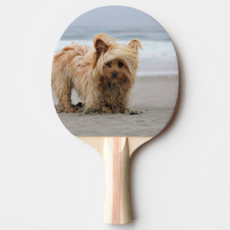Farris - Lucy - Mixed Breed Ping Pong Paddle