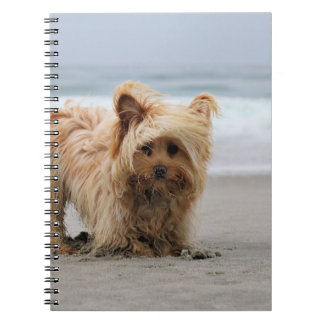 Farris - Lucy - Mixed Breed Spiral Notebook
