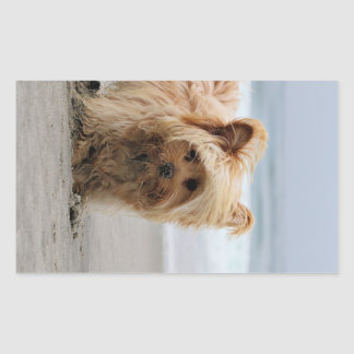 Farris - Lucy - Mixed Breed Sticker