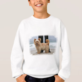 Farris - Lucy - Mixed Breed Sweatshirt