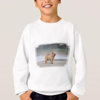 Farris - Lucy - Mixed Breed Sweatshirt