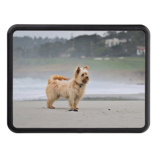 Farris - Lucy - Mixed Breed Trailer Hitch Cover