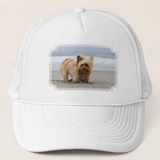 Farris - Lucy - Mixed Breed Trucker Hat