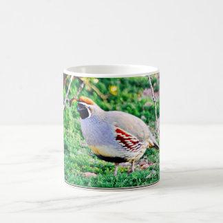 Fat Arizona Quail Coffee Cup/Mug Coffee Mug