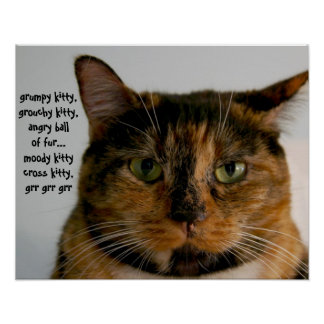 Fat Cat with Attitude, grumpy kitty song Poster