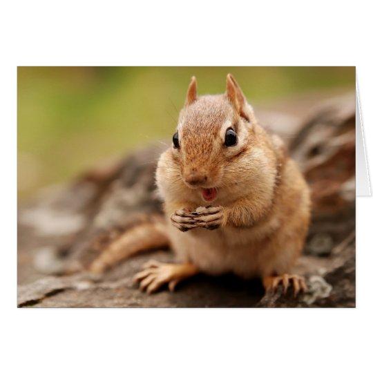 Fat & Happy Chipmunk Card