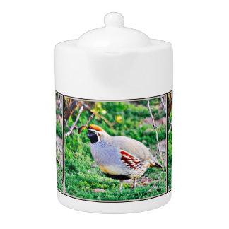 Fat Sonoran Dove Tea Pot