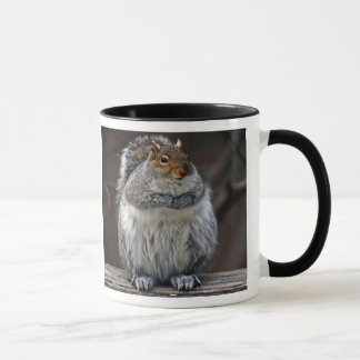 "Fat Squirrel ""Got Nuts?"" Mug"
