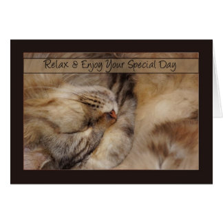 Father's Day Card Relax With Sleeping Maine Coon