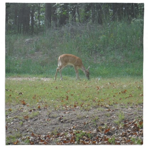 faun, baby deer at Lake Arrowhead Napkin