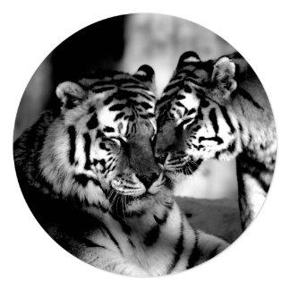Faune, tigre extraordinaire carton d'invitation  13,33 cm